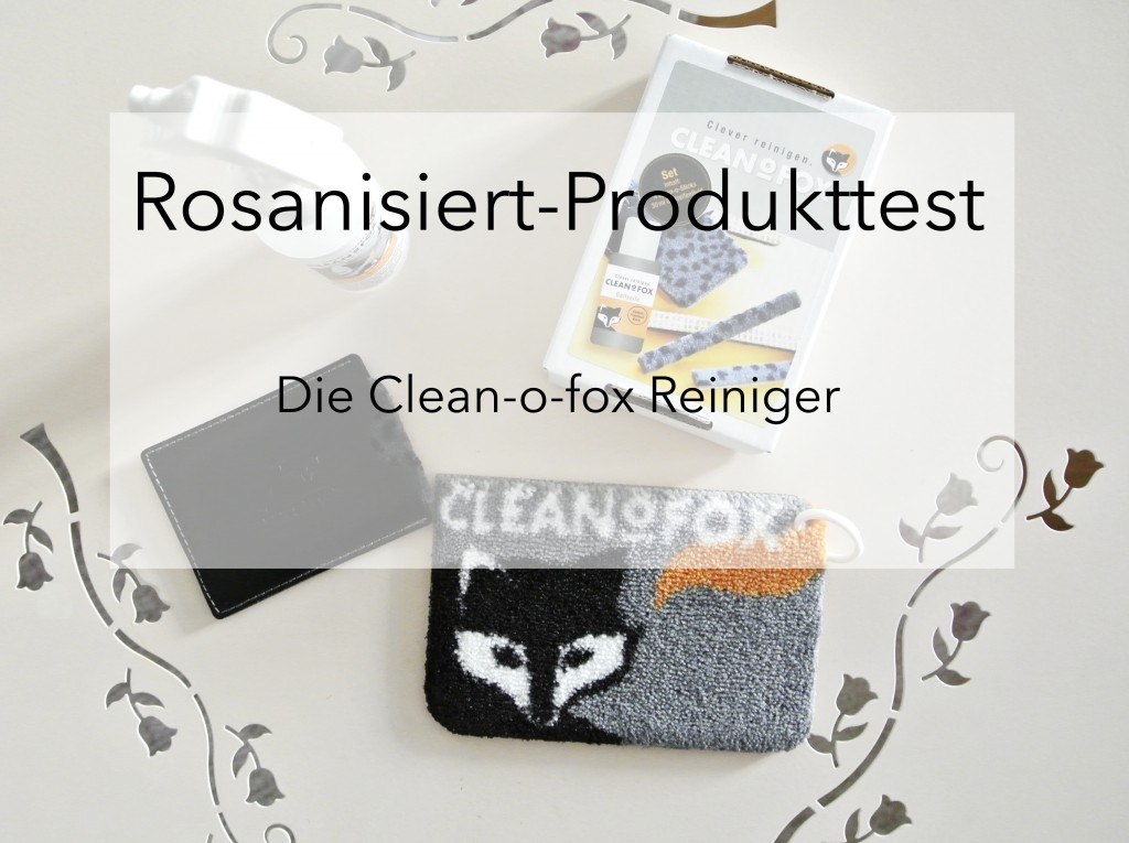 Clean-o-fox Produktpallette Titel