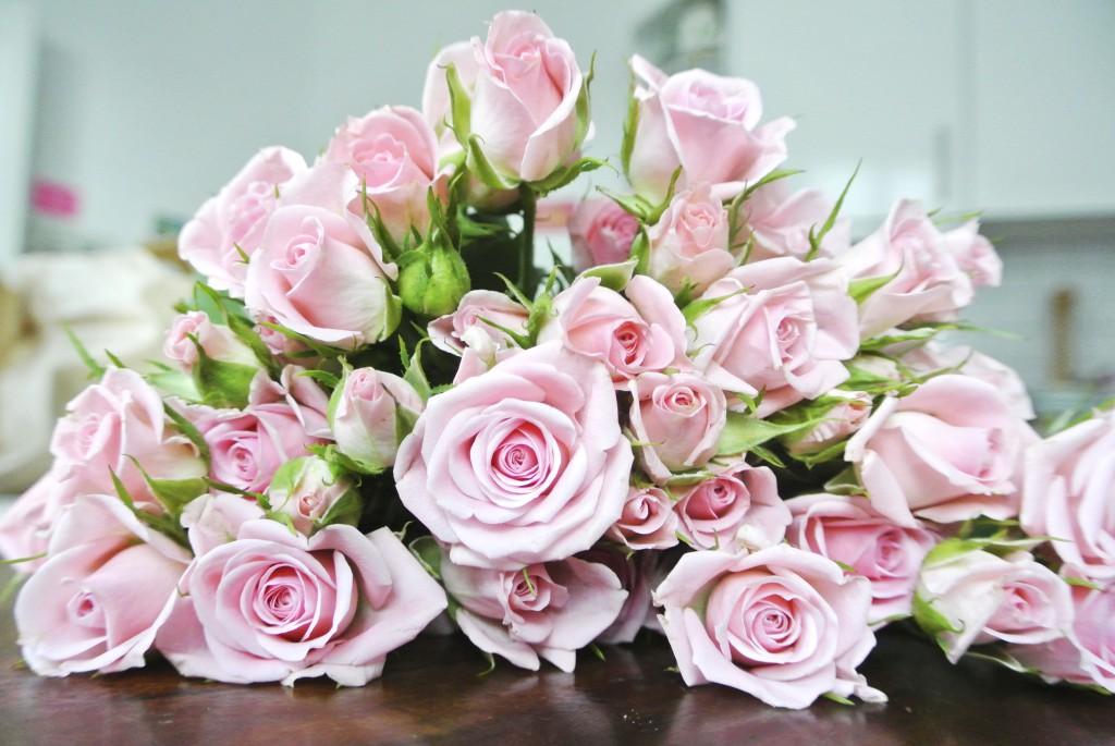 valentinstag wie bleiben blumen l nger frisch rosanisiert. Black Bedroom Furniture Sets. Home Design Ideas